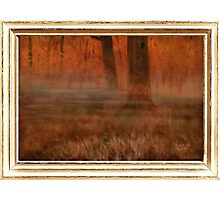 """""""Early Morning in Georgia"""" ... with a canvas and framed presentation, for prints and products Photographic Print"""