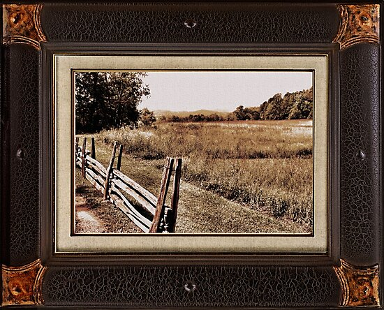 """""""The Dog Days of Summer"""" ... with a matted and framed look, for prints and products by © Bob Hall"""