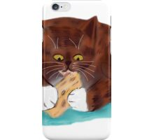 Swiss Cheese snagged by Kitten iPhone Case/Skin