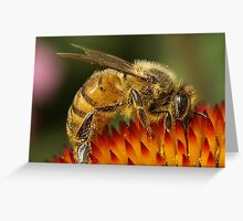 Bumble Bee covered in Cone Pollen Greeting Card