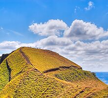 Ants Marching - Landscape in Nicaragua by Mark Tisdale