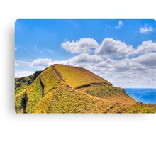 Ants Marching - Landscape in Nicaragua Canvas Print