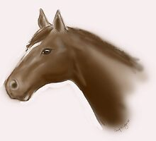brown horse by Chezz