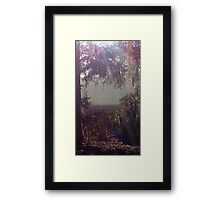 The sparkly leaf path into the morning marsh mist Framed Print