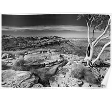 Ghost Gum Over Kings Canyon Poster