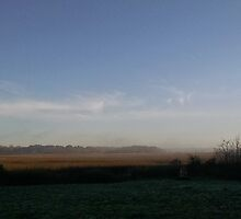 Layer of mist with blue sky over marsh by Nadia Korths