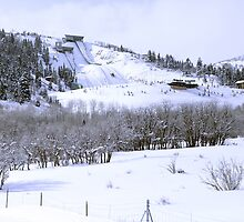 Park City Olympic Ski Jump by Judson Joyce