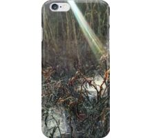 Sun's ray falling onto spider web pools iPhone Case/Skin