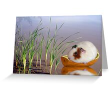Stuck In The Reeds Greeting Card