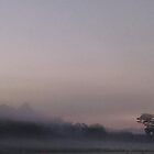 Mist at dawn with grandmother pine tree by Nadia Korths