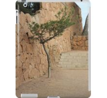The art of Nature iPad Case/Skin