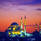 Topkapi Palace, Istanbul by FritzFitton