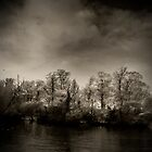 Cold River by Paul Campbell