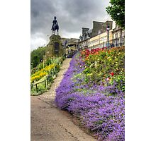 Lavender in the Park Photographic Print