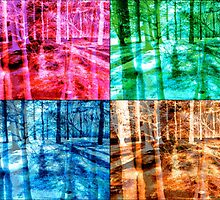 Colorful Forest Trees Four Color Patch Organic Design by M Sylvia Chaume