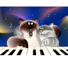 Cats Playing Piano Photographic Print