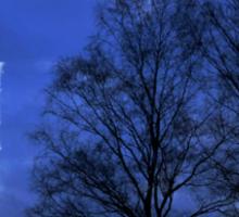 Moon between Trees - JUSTART © Sticker