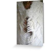Angel's Tread Greeting Card