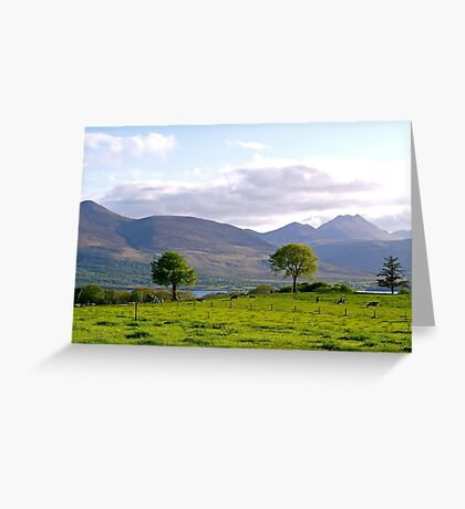 Aghadoe Hill in Springtime Greeting Card