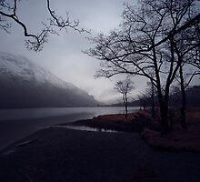 The Lake - Llyn Gwynant by Simon Pattinson