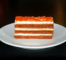 Carrot Cake Profile by AndreaLeaChase