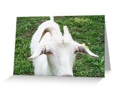 Charming goat Greeting Card