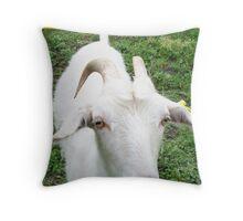 Charming goat Throw Pillow