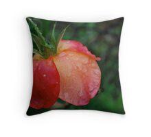 tri-color drop  Throw Pillow