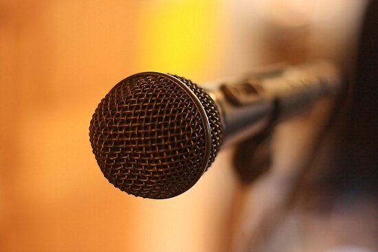 The Mic by Pamela Jayne Smith