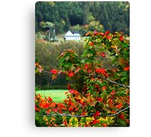 Autumn in the Highlands Canvas Print