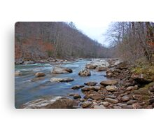 Williams River Canvas Print