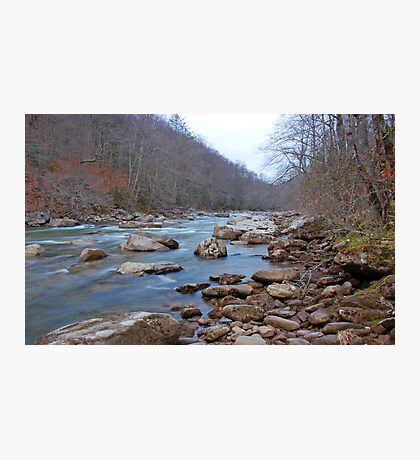 Williams River Photographic Print
