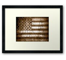 USA in Sepia Framed Print