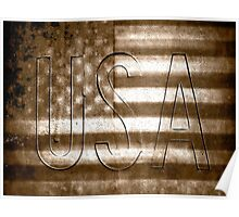 USA in Sepia Poster
