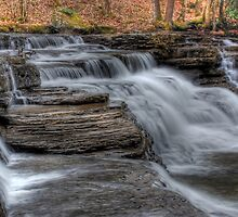 Campbells Falls  by Jason Vickers