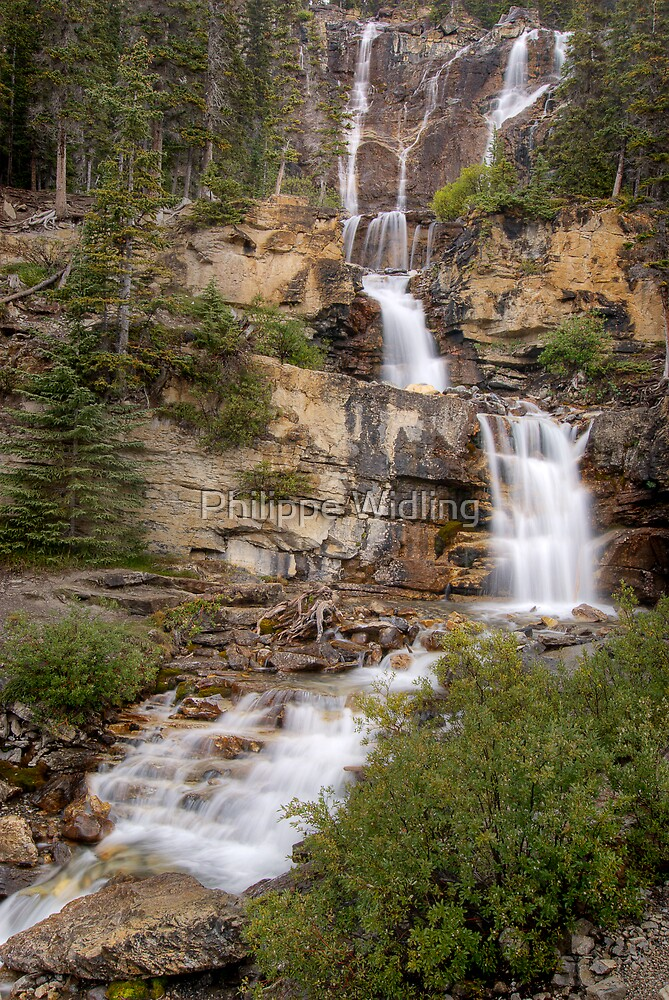 Tangle Falls by Philippe Widling