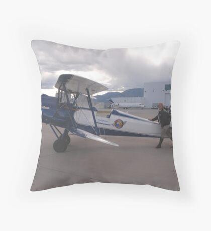 'Pet Walking'   Throw Pillow