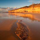 Anglesea Awakes by Neil
