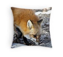 I smell something Throw Pillow