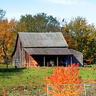 Country Barn by LisaM
