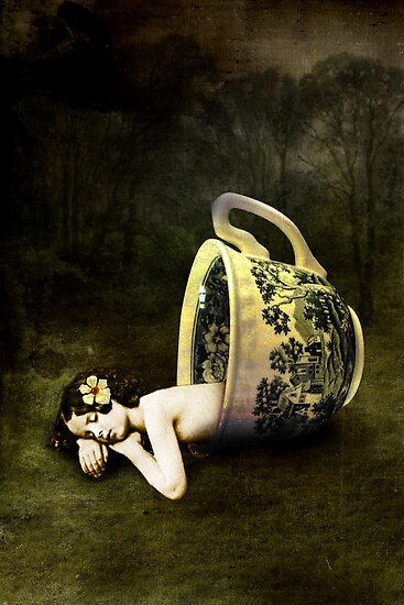 The teacup by Catrin Welz-Stein