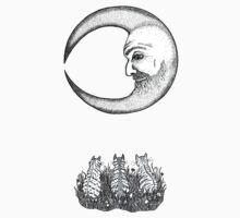 Three Tabbies Meet The Man In The Moon Kids Tee