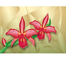 Orchids on Metal Fractals Photographic Print