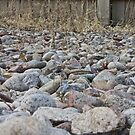 Sea of Rocks by Jonathan Bartlett
