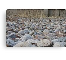 Sea of Rocks Canvas Print