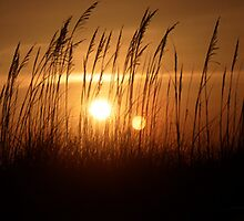 Sunset at the Ocean by LisaM