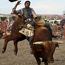 Bull Rider by Barrie Collins