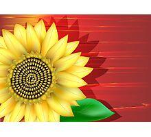 Sunflower Close up Photographic Print