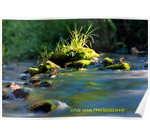 not your stepping stone Poster