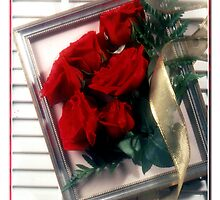 red roses by alriccio